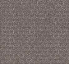 Shaw Floors Simply The Best Valid Iced Mocha 00505_5E323