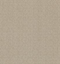 Shaw Floors Simply The Best Transform Biscuit 00107_5E327