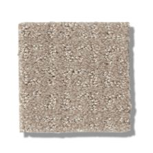 Shaw Floors Simply The Best Transform Sand Swept 00109_5E327