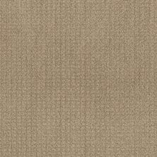 Shaw Floors Value Collections Stay Fit Net Honeycomb 00200_5E330