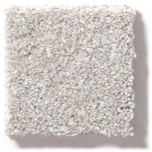Shaw Floors Value Collections Make It Mine II Net Soft Fleece 00120_5E332