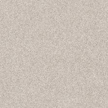 Shaw Floors Value Collections Make It Mine II Net Desert Light 00121_5E332