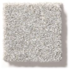 Shaw Floors Value Collections Make It Mine II Net Clay 00122_5E332