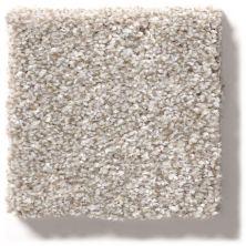Shaw Floors Value Collections Make It Mine II Net Winter Dunes 00123_5E332