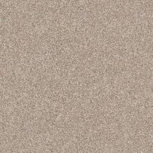 Shaw Floors Value Collections Make It Mine II Net Grecian Tan 00720_5E332
