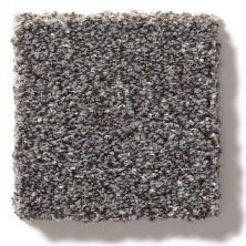 Shaw Floors Value Collections Make It Mine II Net Mocha 00723_5E332