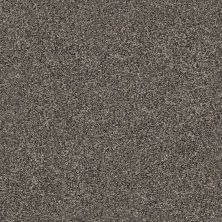Shaw Floors Simply The Best Within Reach III Net Beige Bisque 00110_5E337