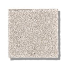 Shaw Floors Foundations Chic Nuance Serene Still 00101_5E341