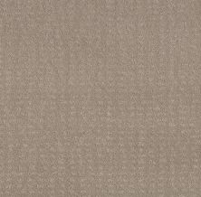 Shaw Floors Foundations Chic Nuance Fossil Path 00108_5E341