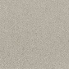 Shaw Floors Foundations Chic Shades Winters Dawn 00102_5E342