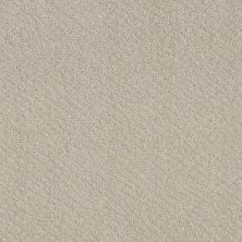 Shaw Floors Foundations Chic Shades Washed Linen 00103_5E342