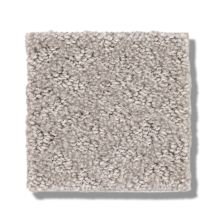 Shaw Floors Foundations Chic Shades Split Sediment 00104_5E342