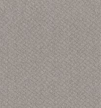 Shaw Floors Foundations Chic Shades Silver Lining 00500_5E342