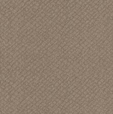 Shaw Floors Foundations Chic Shades Desert View 00701_5E342