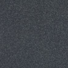 Shaw Floors Value Collections Solidify I 15 Net Iron 00501_5E343