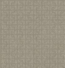 Shaw Floors Value Collections Vastly Net Twine 00108_5E348