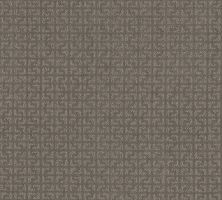 Shaw Floors Simply The Best Vastly Net Iced Mocha 00505_5E348