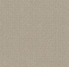 Shaw Floors Value Collections Transform Net Oatmeal 00108_5E351