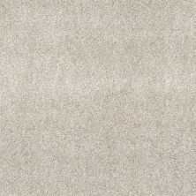 Shaw Floors Value Collections Calm Serenity II Net Serene Still 00101_5E354
