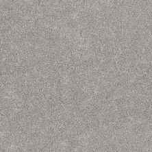 Shaw Floors Value Collections Calm Serenity II Net Split Sediment 00104_5E354