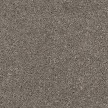 Shaw Floors Value Collections Calm Serenity II Net Dark Maple 00702_5E354