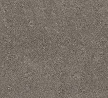 Shaw Floors Value Collections Calm Simplicity II Net Desert View 00711_5E356