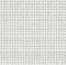 Shaw Floors Value Collections Charming Transition Net Snow Cap 00100_5E357