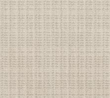 Shaw Floors Value Collections Charming Transition Net Washed Linen 00103_5E357