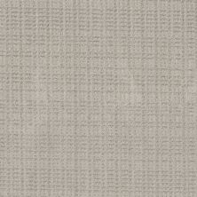 Shaw Floors Value Collections Charming Transition Net Split Sediment 00104_5E357