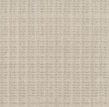 Shaw Floors Value Collections Charming Transition Net Shoreline 00106_5E357