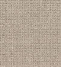 Shaw Floors Value Collections Charming Transition Net Desert View 00701_5E357