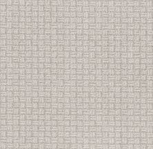 Shaw Floors Value Collections Soothing Surround Net Winters Dawn 00102_5E358