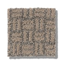 Shaw Floors Value Collections Soothing Surround Net Beige Bisque 00110_5E358