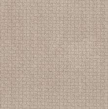 Shaw Floors Value Collections Soothing Surround Net Desert View 00701_5E358