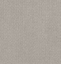 Shaw Floors Value Collections Secret Passage Net Washed Linen 00103_5E360