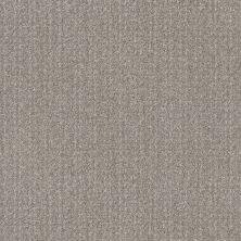 Shaw Floors Value Collections Secret Passage Net Split Sediment 00104_5E360