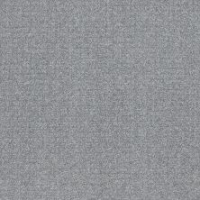 Shaw Floors Value Collections Secret Passage Net Stormy Breeze 00501_5E360