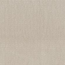 Shaw Floors Value Collections Chic Nuance Net Serene Still 00101_5E362