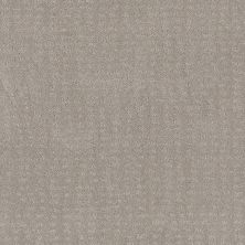 Shaw Floors Value Collections Chic Nuance Net Split Sediment 00104_5E362