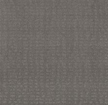 Shaw Floors Value Collections Chic Nuance Net Grey Fox 00504_5E362