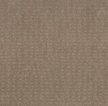 Shaw Floors Value Collections Chic Nuance Net Desert View 00701_5E362