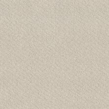 Shaw Floors Value Collections Chic Shades Net Serene Still 00101_5E363