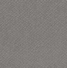 Shaw Floors Value Collections Chic Shades Net Grey Fox 00504_5E363