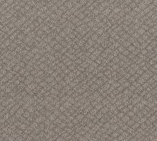 Shaw Floors Value Collections Chic Shades Net River Run 00700_5E363
