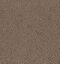 Shaw Floors Value Collections Chic Shades Net Raw Wood 00720_5E363