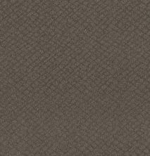 Shaw Floors Value Collections Chic Shades Net Ridgeview 00751_5E363