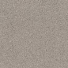 Shaw Floors Value Collections Cozy Harbor I Net Baltic Stone 00128_5E364