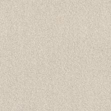 Shaw Floors Value Collections Cozy Harbor I Net Delicate Cream 00156_5E364