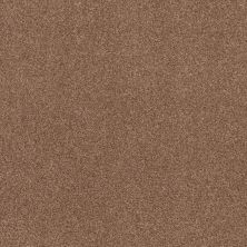 Shaw Floors Value Collections Cozy Harbor I Net Sunbaked 00650_5E364