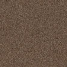 Shaw Floors Value Collections Cozy Harbor I Net Raw Wood 00720_5E364